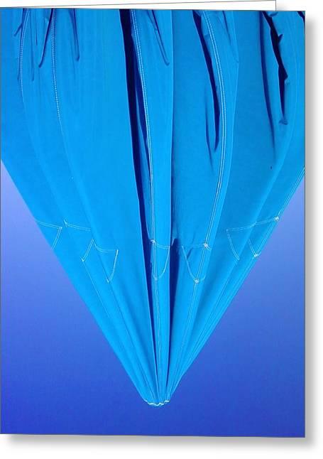 True Blue Greeting Card by Anna Villarreal Garbis