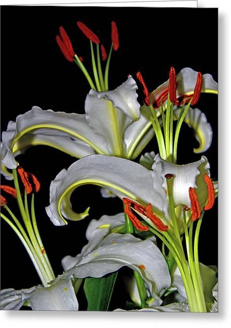 True Lilies Greeting Card