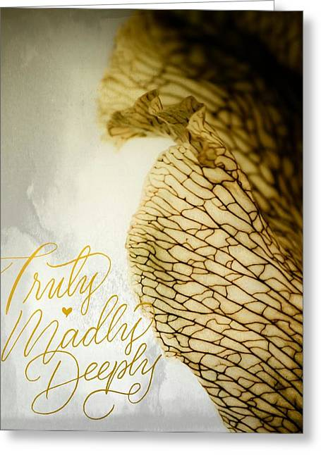 Greeting Card featuring the photograph Truly Madly Deeply by Bobby Villapando