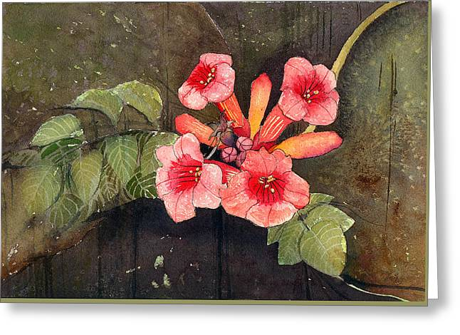 Trumpet Vine II Greeting Card