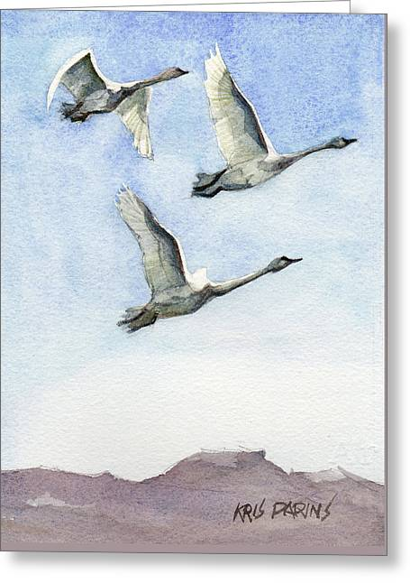 Trumpeter Swan Study Greeting Card by Kris Parins