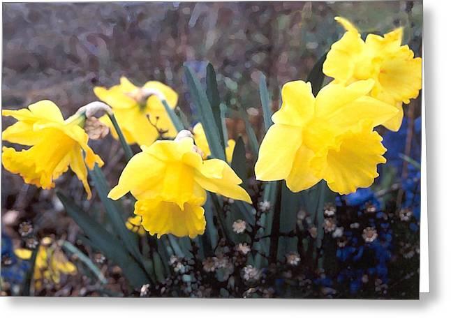 Trumpets Of Spring Greeting Card by Steve Karol