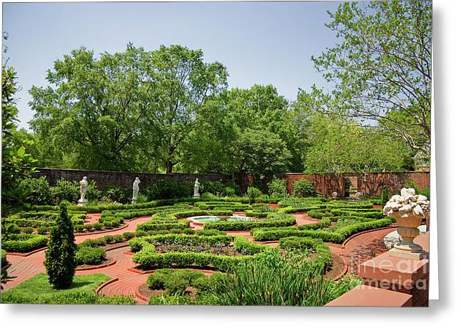 Tryon Palace Gardens Greeting Card by Jill Lang