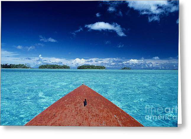 Tuamotu Islands, Raiatea Greeting Card by William Waterfall - Printscapes