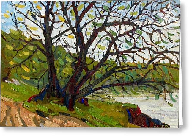 Tubb's Tree Greeting Card by Phil Chadwick