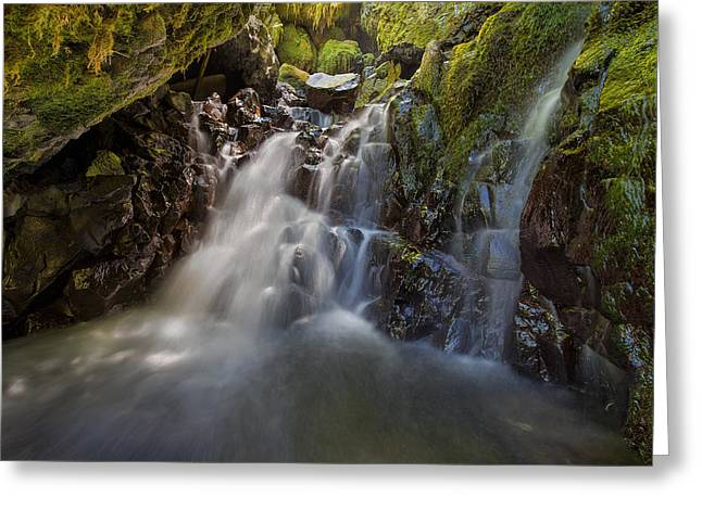 Tucked Away In Gorton Creek Greeting Card by David Gn