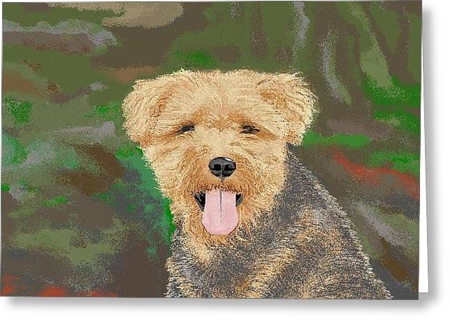 Tucker The Welsh Terror Greeting Card by Carole Boyd