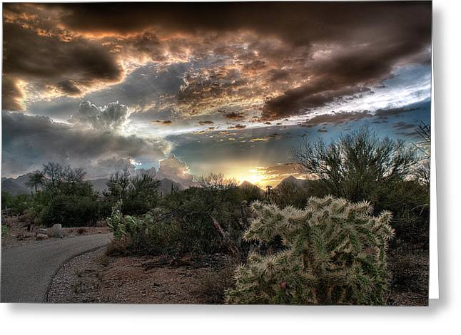 Tucson Mountain Sunset Greeting Card