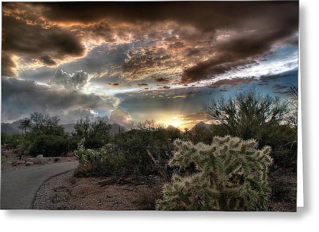 Greeting Card featuring the photograph Tucson Mountain Sunset by Lynn Geoffroy
