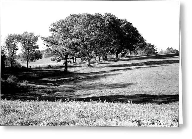 Tufts Land At Route 30 Greeting Card