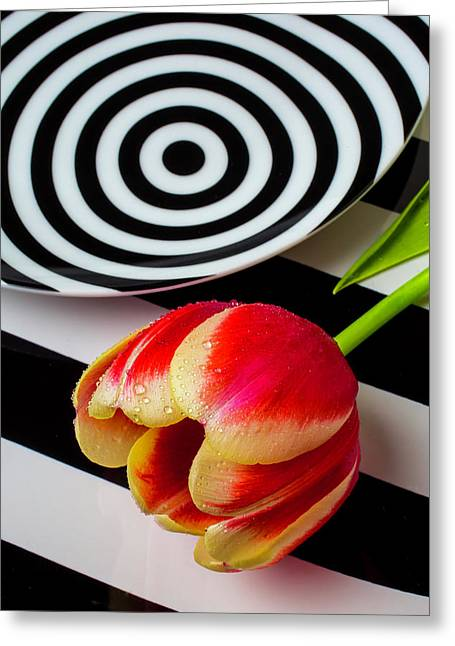 Tulip And Graphic Plates Greeting Card by Garry Gay