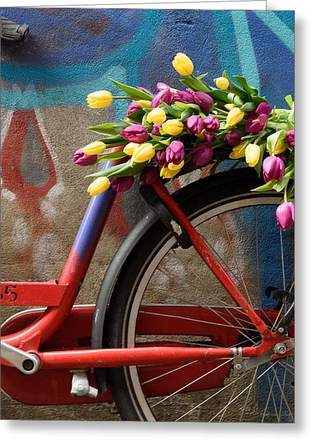 Tulip Bike Greeting Card
