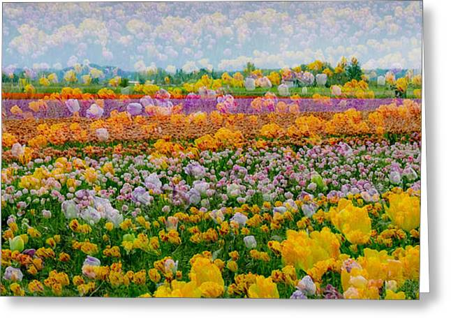 Greeting Card featuring the photograph Tulip Dreams by Tom Vaughan