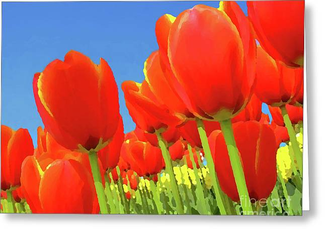 Tulip Field Greeting Card by Giancarlo Liguori