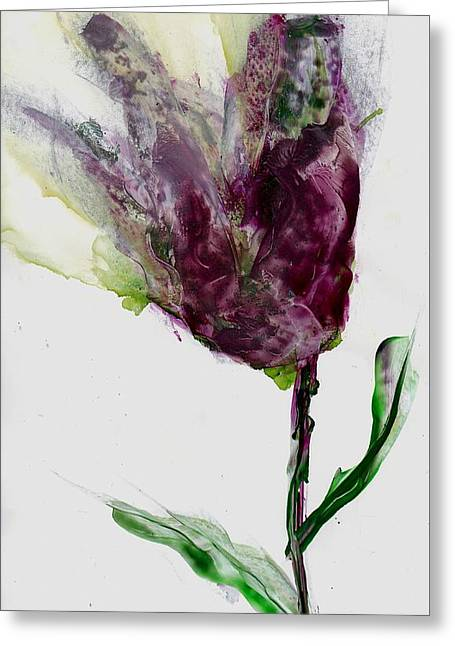 Tulip For Canada Day Greeting Card by Cynthia Matthews
