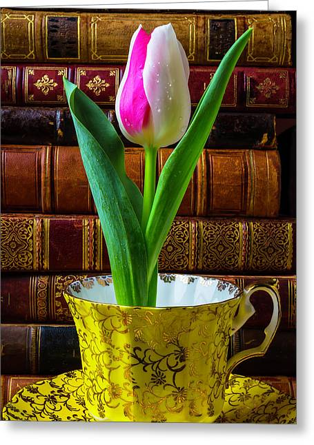 Tulip In A Tea Cup Greeting Card by Garry Gay