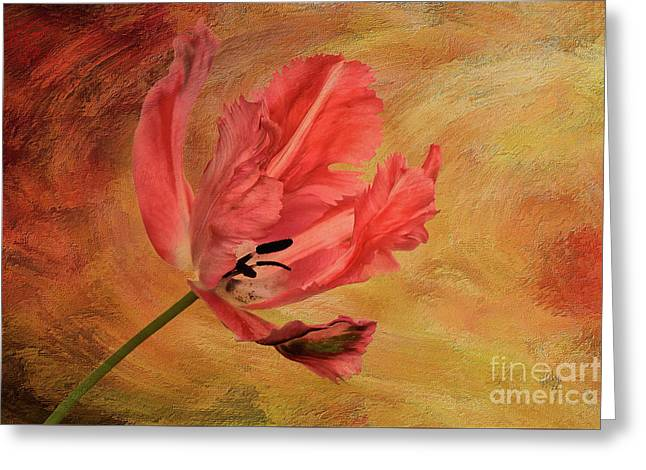 Tulip In Flames Greeting Card by Lois Bryan
