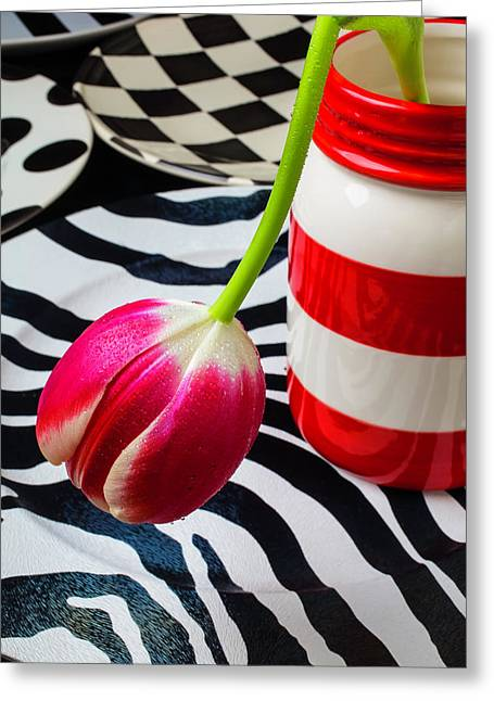 Tulip In Red And White Jar Greeting Card by Garry Gay