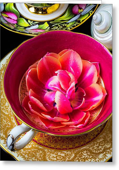 Tulip In Tea Cup Greeting Card by Garry Gay