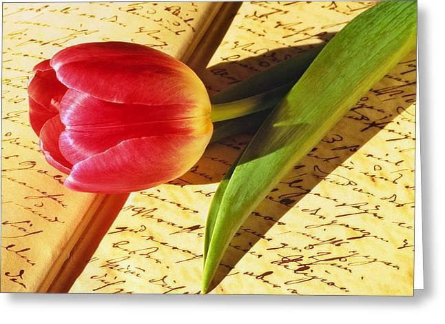 Tulip On An Open Antique Book Greeting Card by Tony Ramos