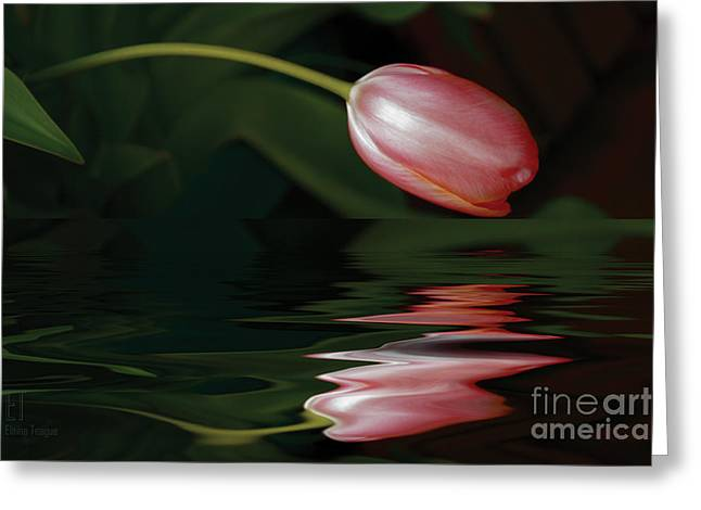 Tulip Reflections Greeting Card