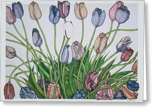 Tulip Serenade  Greeting Card