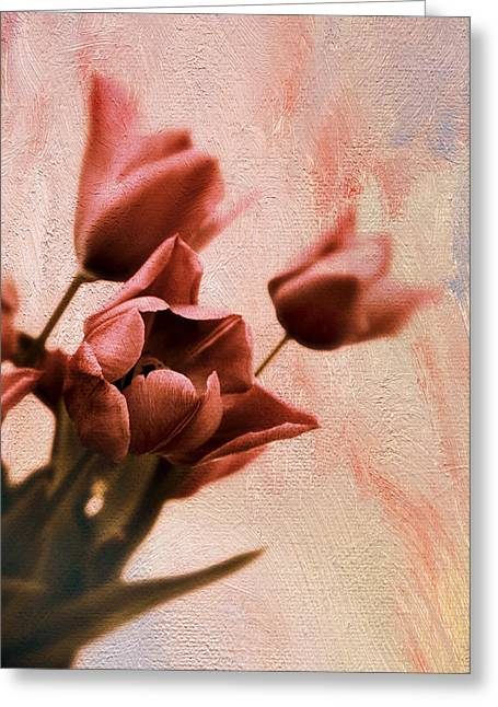 Greeting Card featuring the photograph Tulip Whimsy by Jessica Jenney