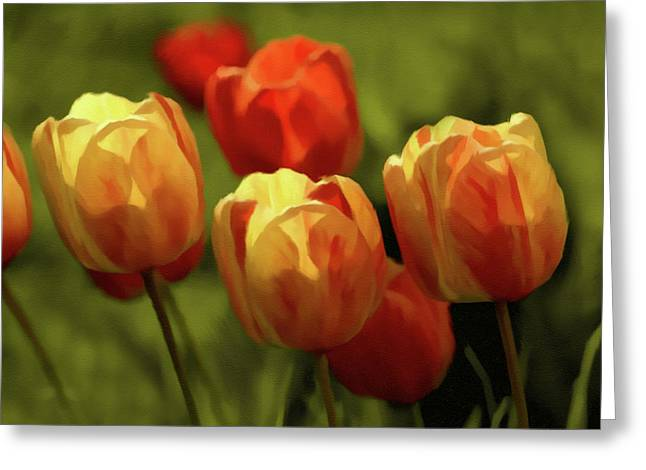 Surprise Greeting Cards - Tulip Surprise Greeting Card by Georgiana Romanovna