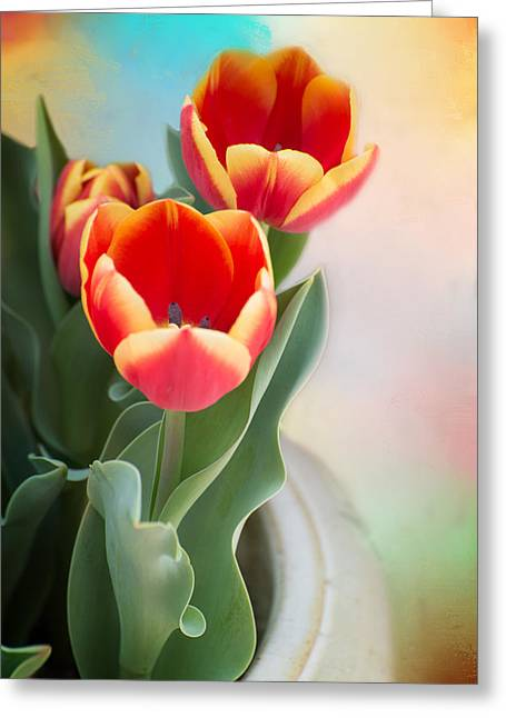 Tulip Time Greeting Card by Lynn Bauer