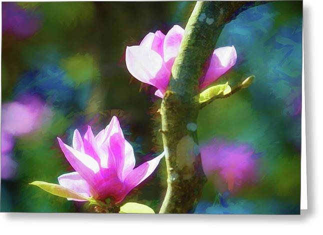 Tulip Tree Greeting Card by James Barber