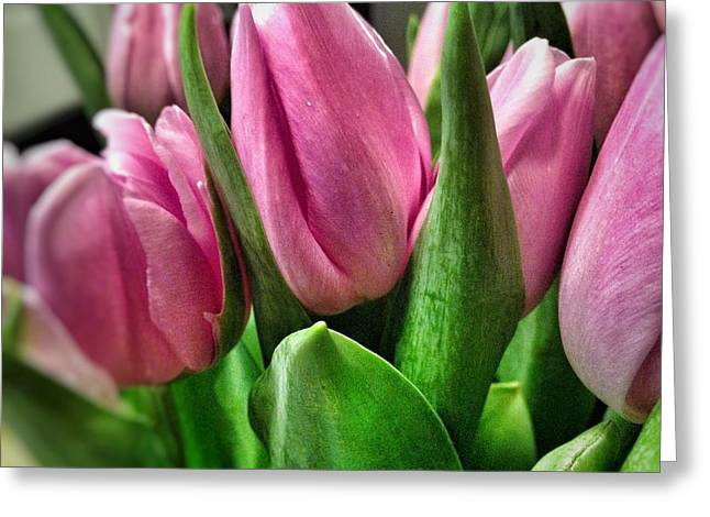 Greeting Card featuring the photograph Tulip143 by Olivier Calas