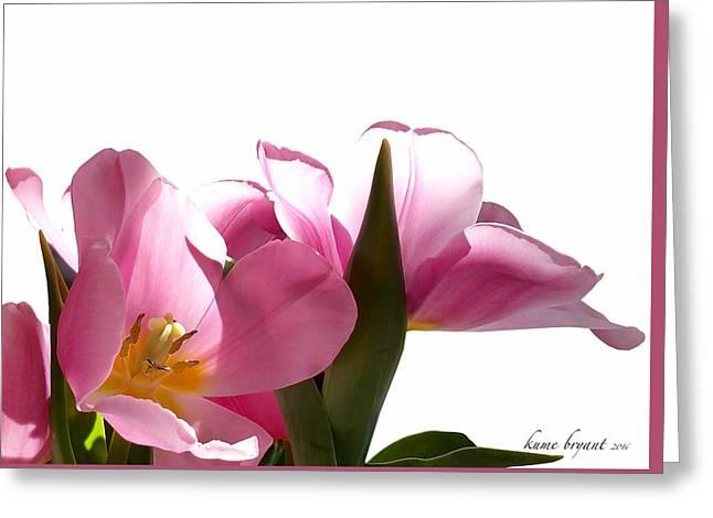 Tulips 8 Greeting Card