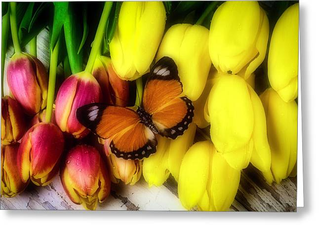 Tulips And Orange Butterfly Greeting Card by Garry Gay