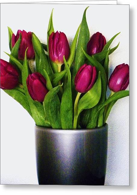 Tulips Greeting Card by Cindy Gacha