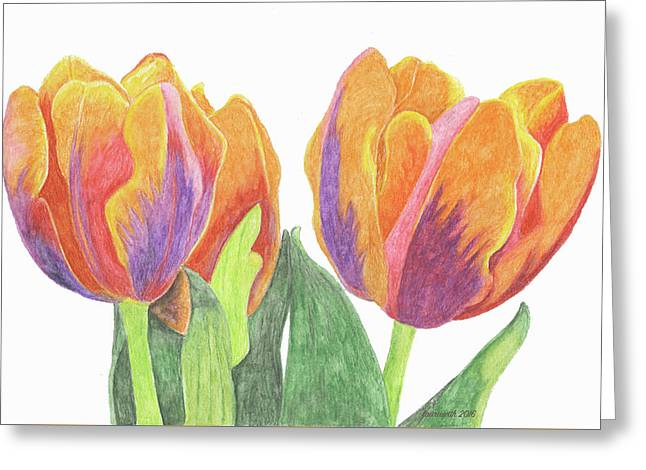 Tulips In Bloom Greeting Card by Laurie With