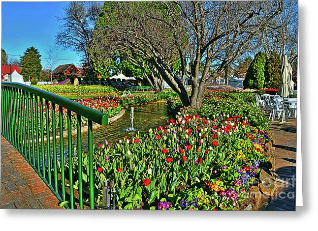 Tulips In The Park By Kaye Menner Greeting Card by Kaye Menner