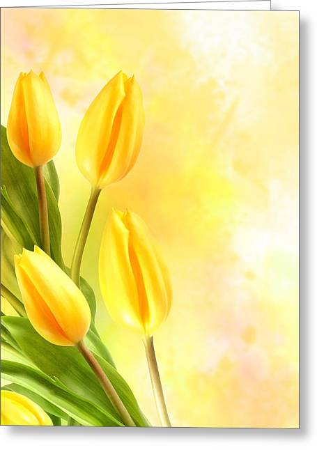 Tulips In Yellow Greeting Card by Mark Rogan