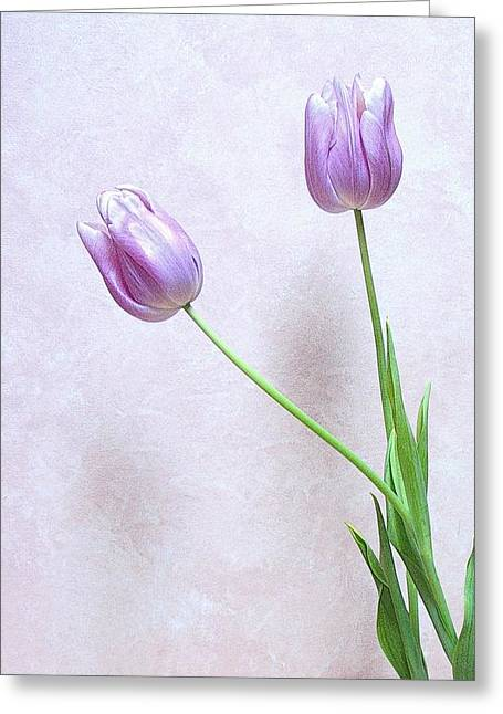 Greeting Card featuring the photograph Tulips by Karen Shackles