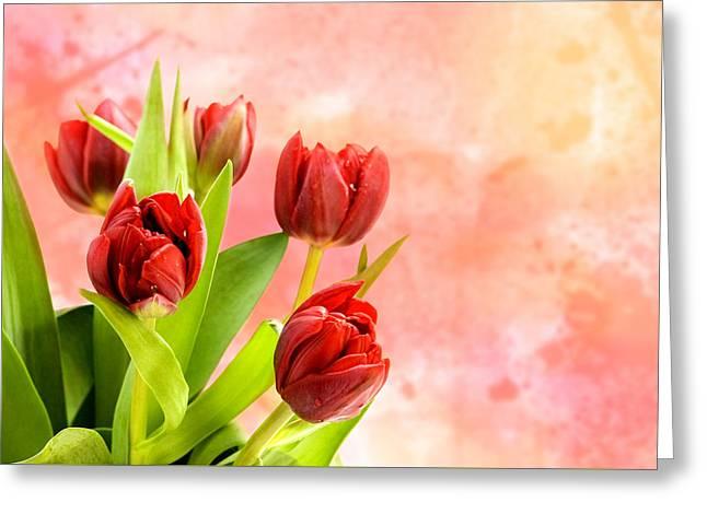 Tulips Greeting Card by Mark Rogan
