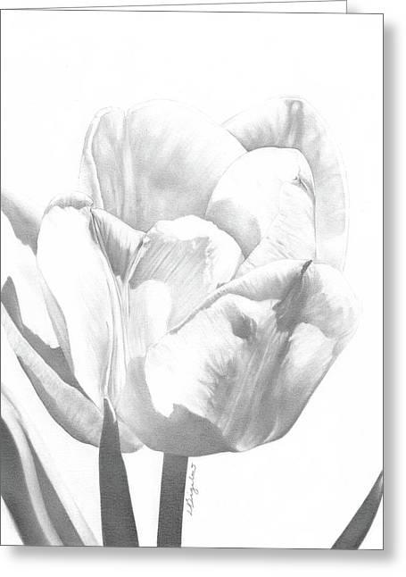 Tulips No. 1 Greeting Card