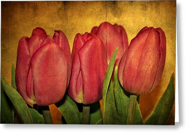 Tulips Standing Greeting Card by Cathie Tyler