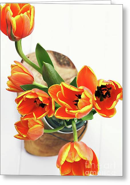 Greeting Card featuring the pyrography Tulips by Stephanie Frey