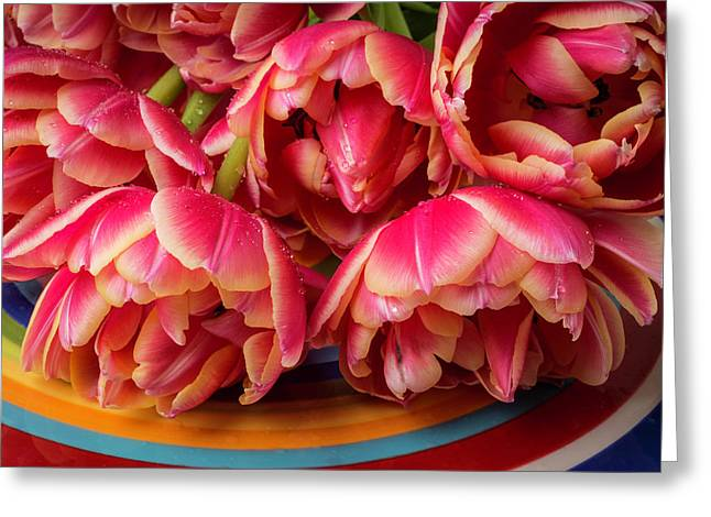 Tulips With Dew On Colorful Plate Greeting Card by Garry Gay