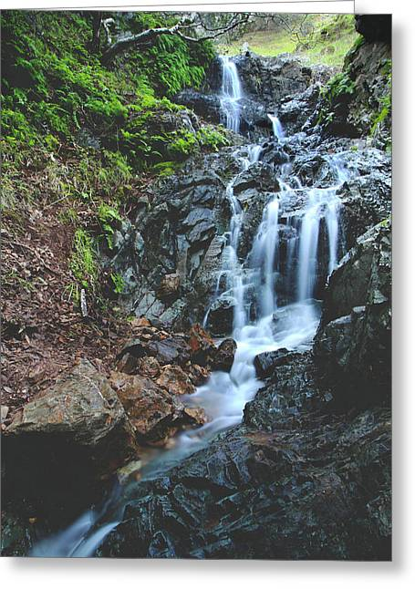 Greeting Card featuring the photograph Tumbling Down by Laurie Search