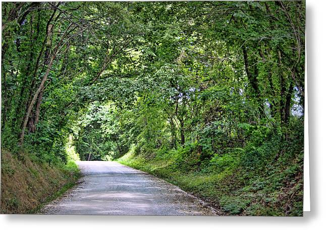 Tunnel Of Trees Greeting Card by Cricket Hackmann