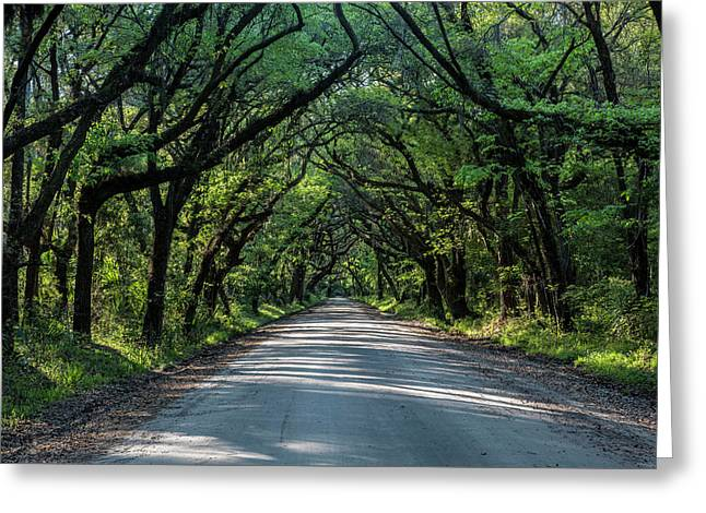 Greeting Card featuring the photograph Tunnel On Botany Bay by Jon Glaser