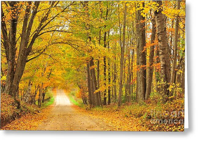Tunneling Into Autumn Greeting Card