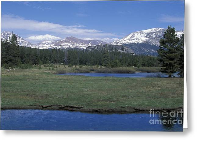 Greeting Card featuring the photograph Tuolomne Meadows In June by Stan and Anne Foster