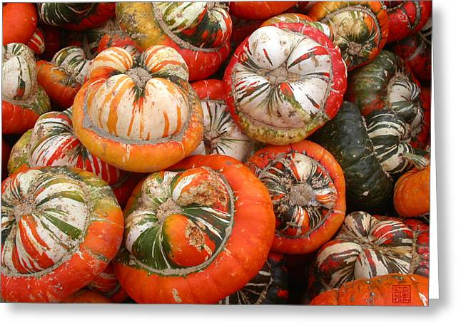 Turban Squash Greeting Card