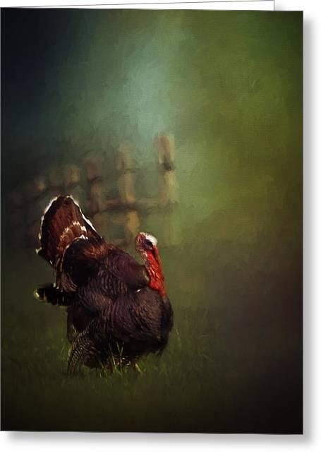 Turkey Greeting Card by David and Carol Kelly